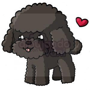 french poodle kawaii