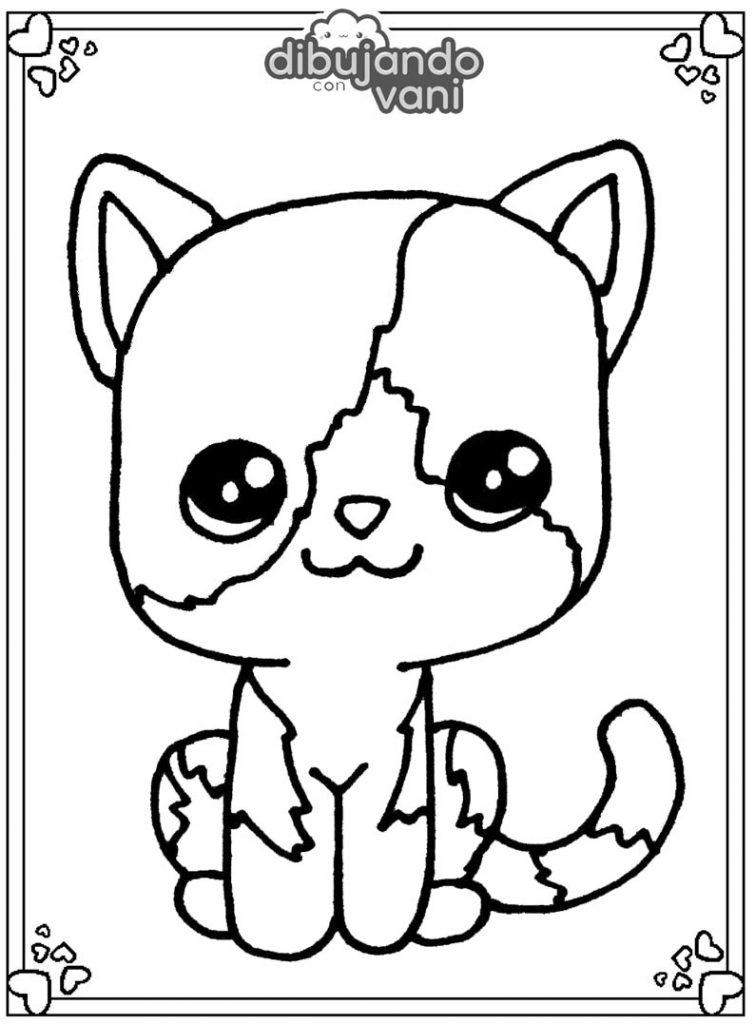 Dibujo de un gato bicolor para imprimir y colorear ...